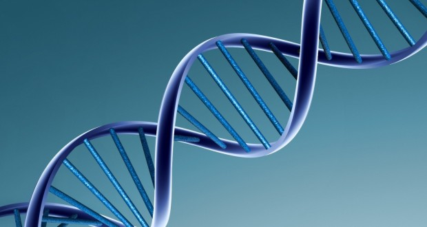 http://www.forbes.com/sites/daviddisalvo/2011/11/22/whats-your-dna-worth/